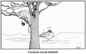 B_Pu_SSCk_buktatoi